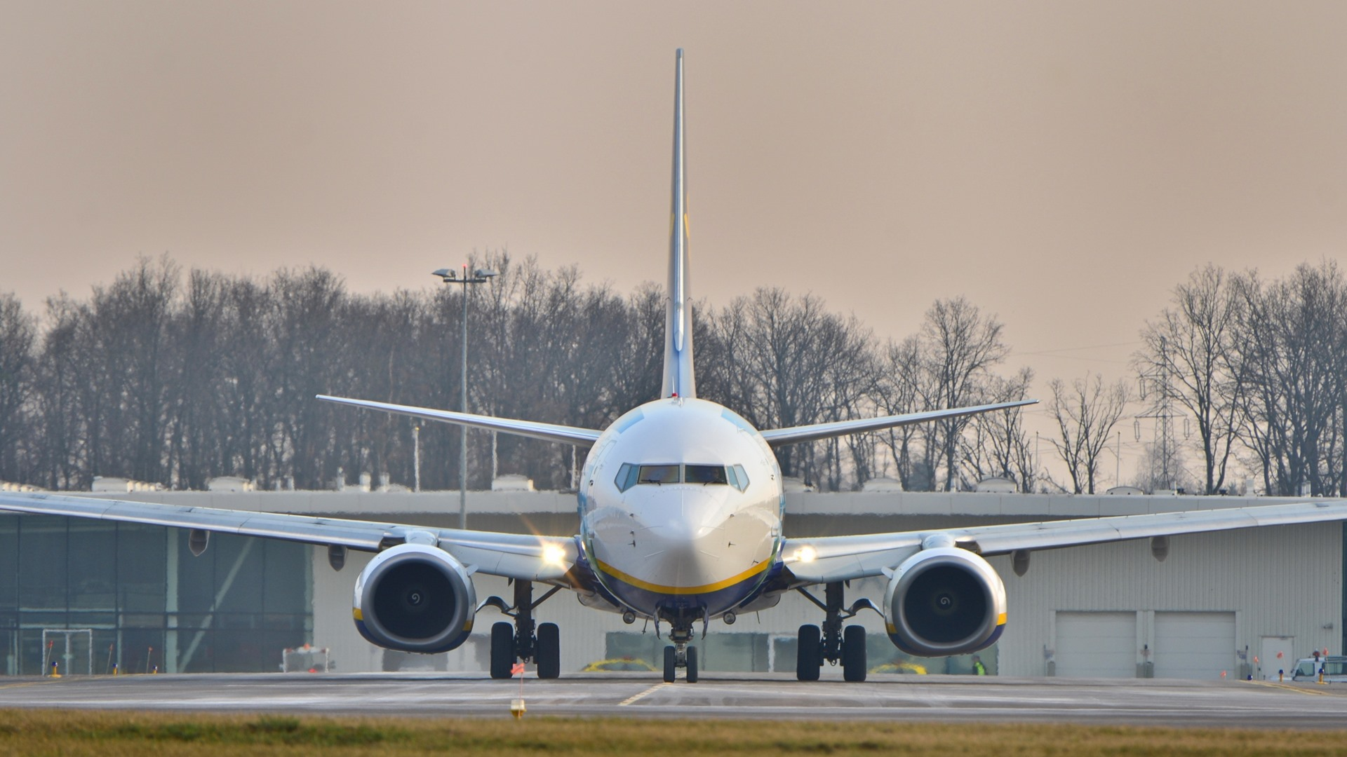 Ryanair plane in special painting