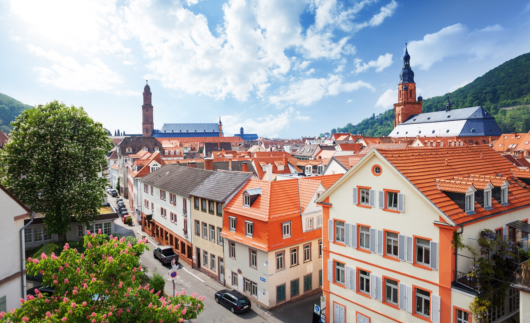 View of the street in Heidelberg, Germany