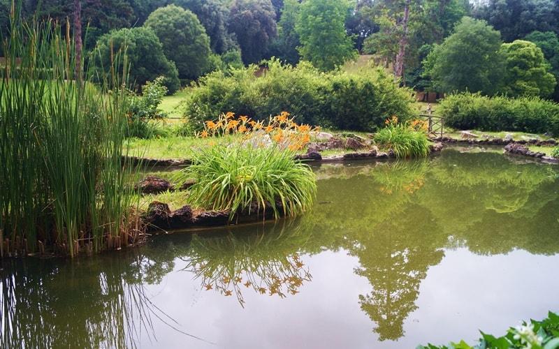 Botanischer-Garten-Florenz