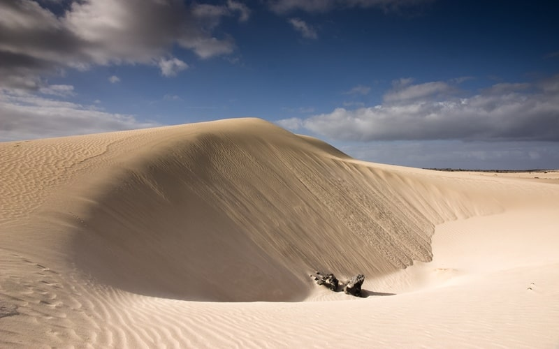 Dünen El Jable Fuerteventura