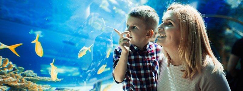 kroatien aquarium