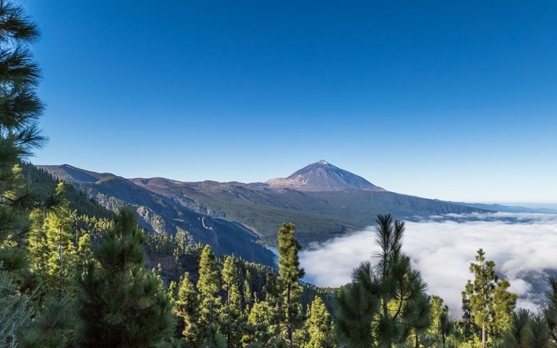Nationalpark-El-Teide