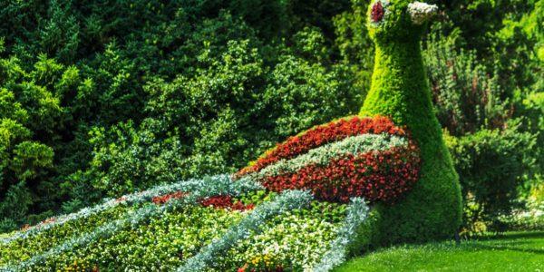 Vogel aus Blumen