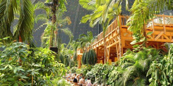 Regenwald im Tropical Island