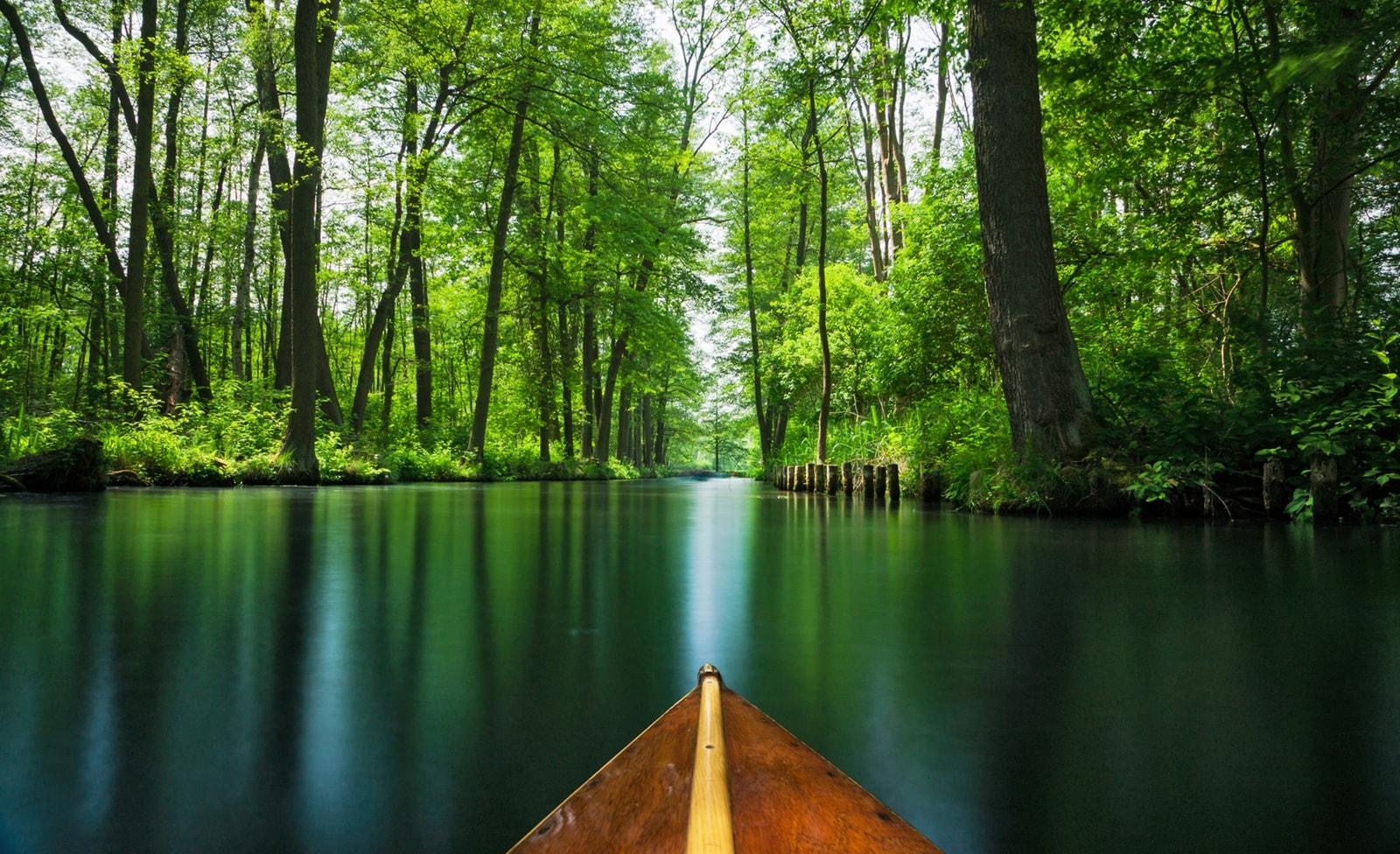 Mit dem Kanu durch den Spreewald