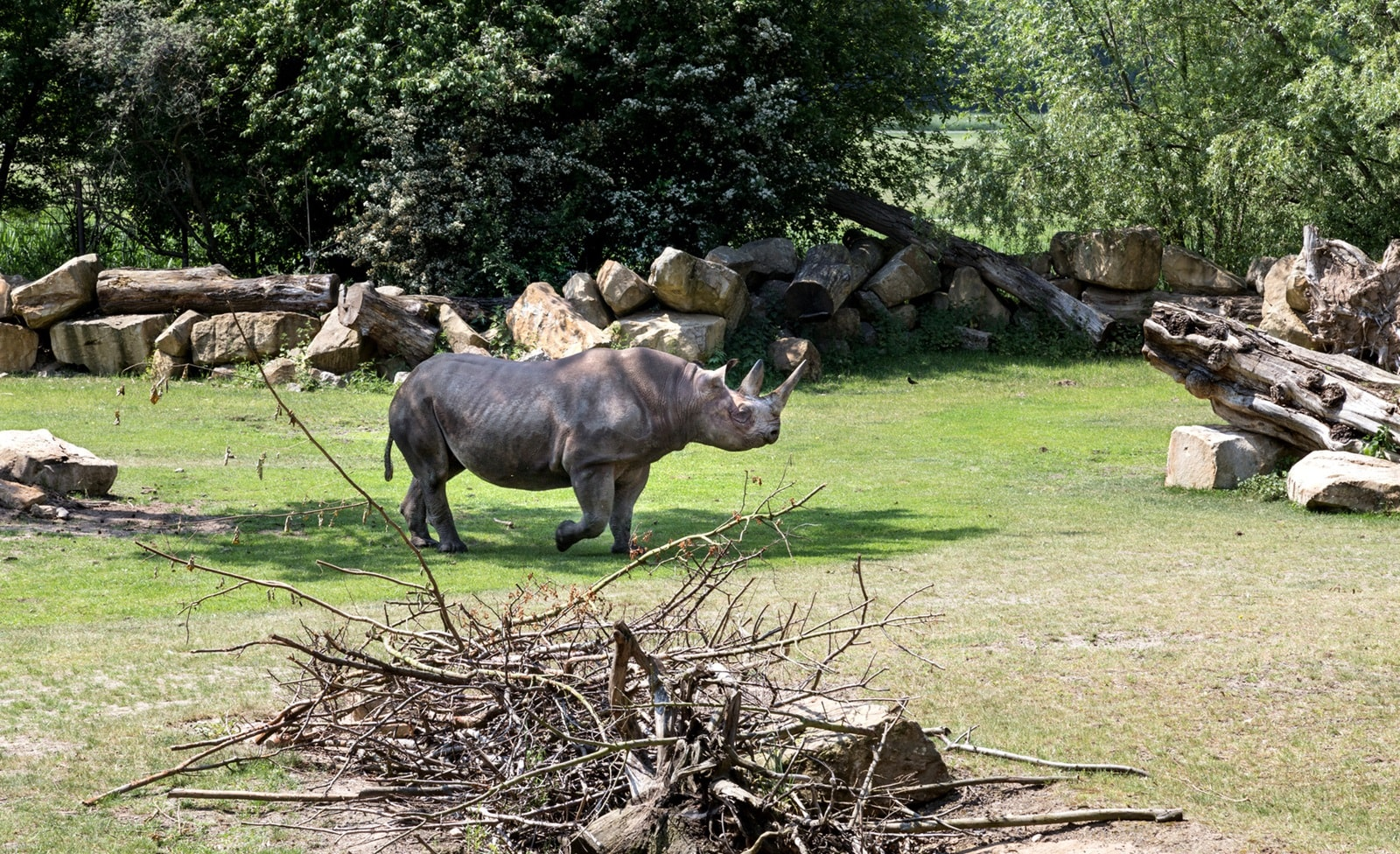 Die Besten Zoos In Nrw