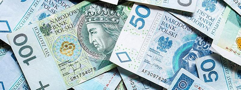 polnische währung