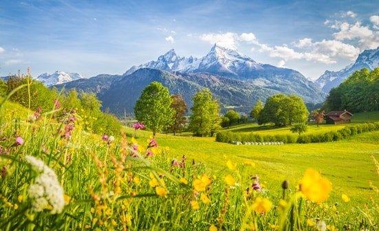 Wiesen und Berge der Alpen