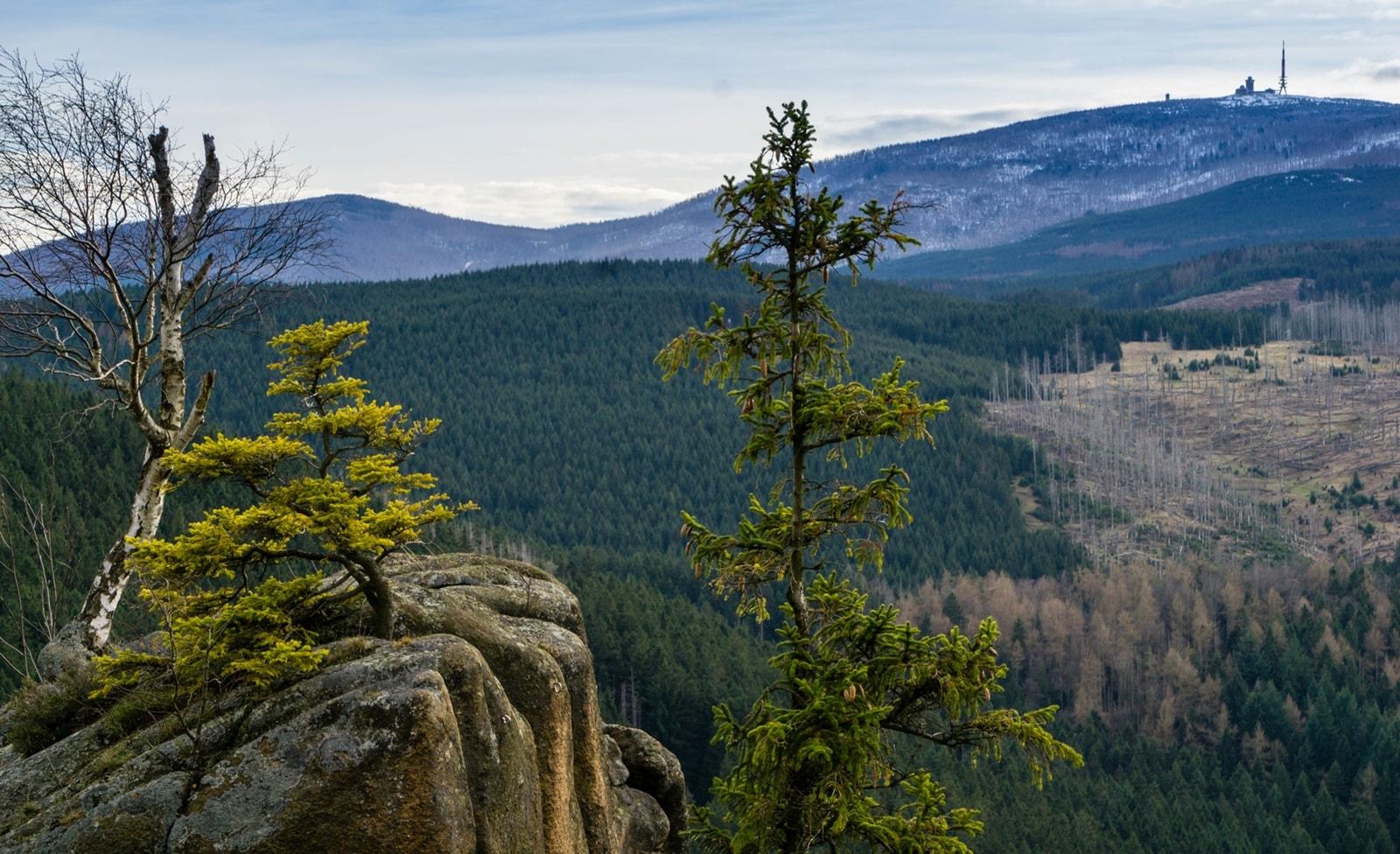 Nationalpark am Brocken