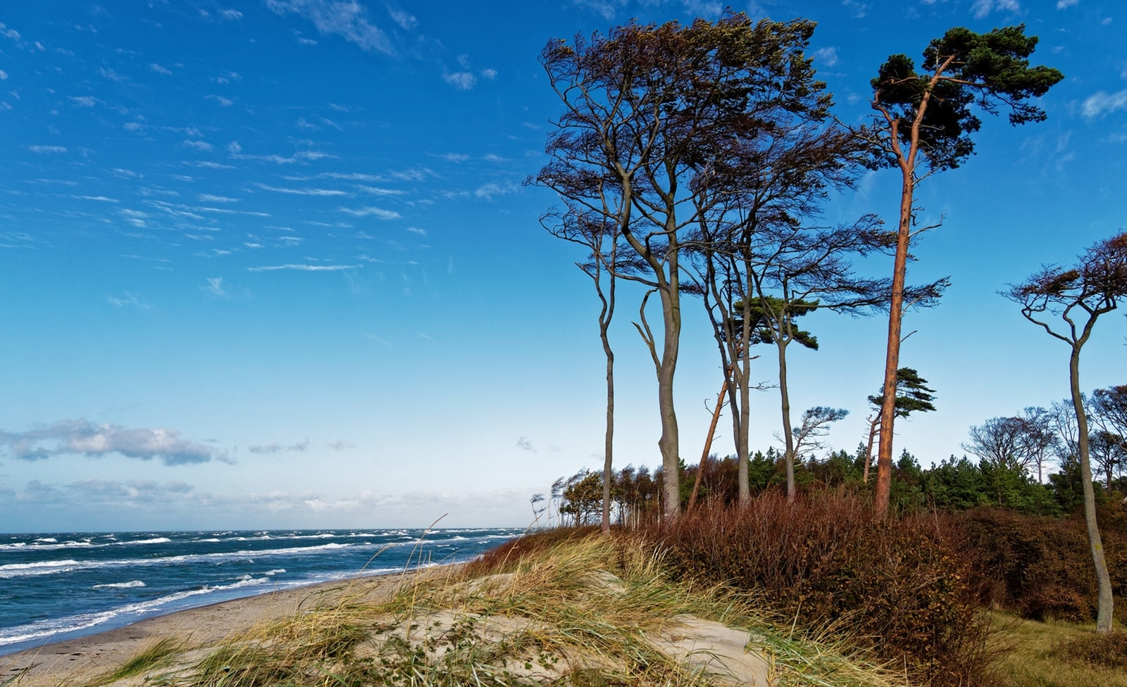 Nationalpark an der Ostsee