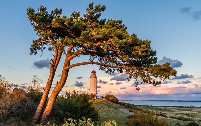 Natur Hiddensee