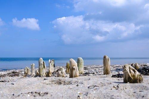 Ummanz Strand