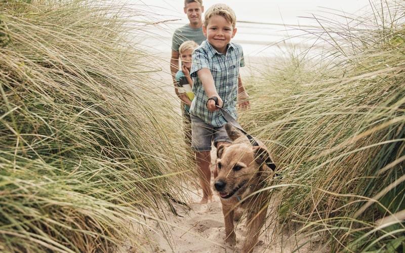 Urlaub mit Hund Usedom