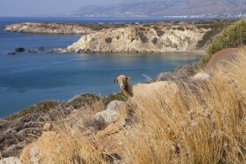 Lassithi Geheimer Strand Kreta