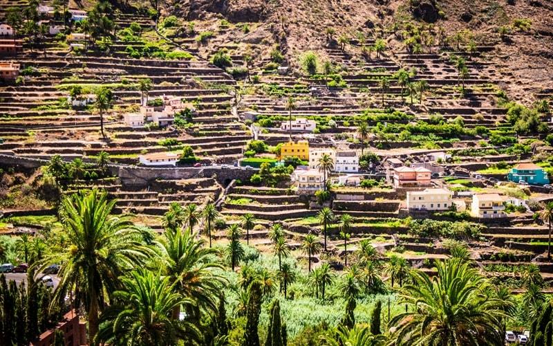 Die Terrassen von Valle Gran Rey.