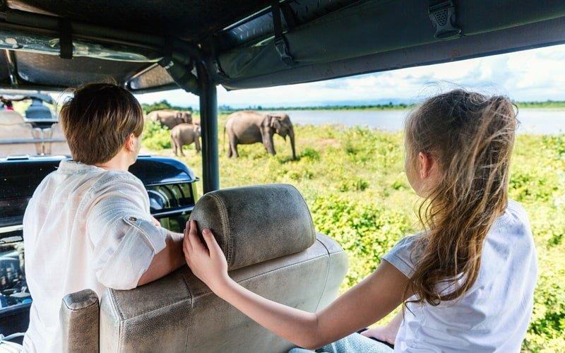 Safari Park Beekse