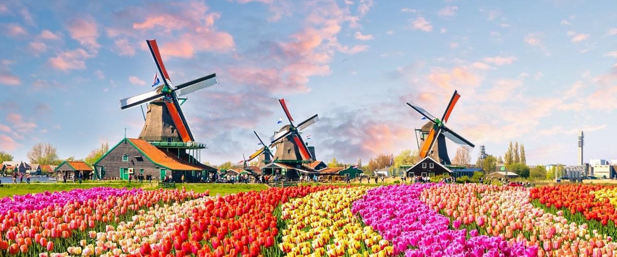 holland sehenswürdigkeiten karte Holland Sehenswürdigkeiten: Top 14 Attraktionen   2020