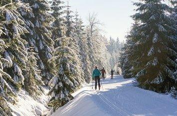 Tschechien skifahren Februar