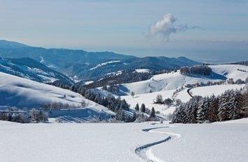Urlaub Januar Schwarzwald