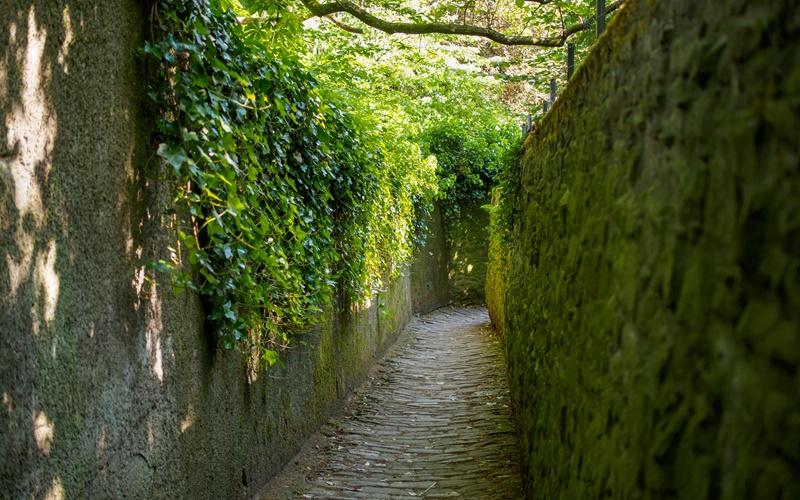 Heidelberg Sehenswürdigkeiten Schlangenweg