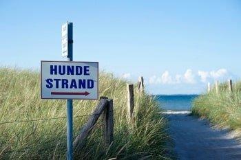 Hundestrand Holland