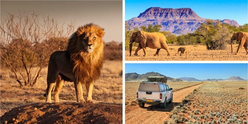 Reiseziel Oktober Namibia