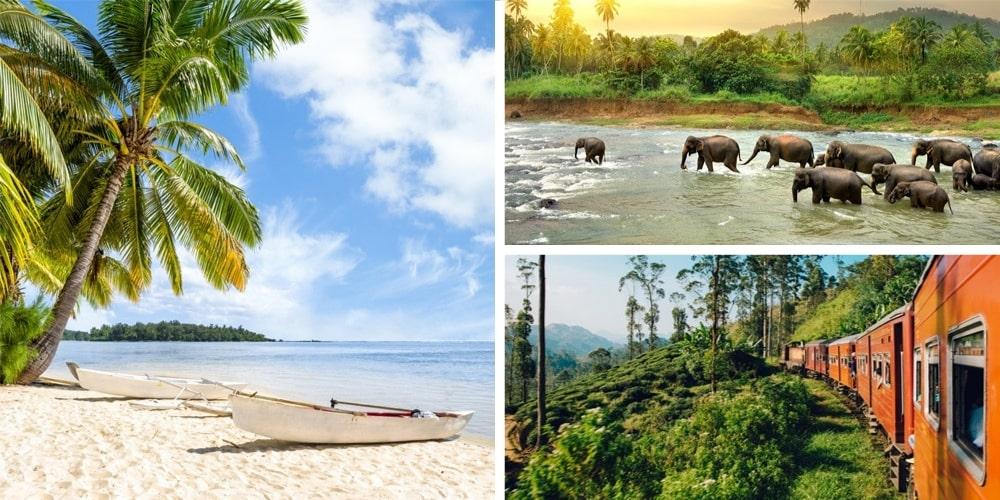 Reiseziel Dezember Sri Lanka