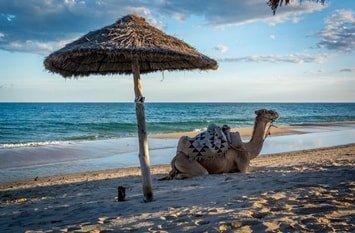 Badeurlaub August Tunesien