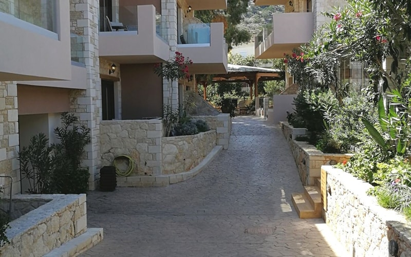 Cactus Royal Kreta