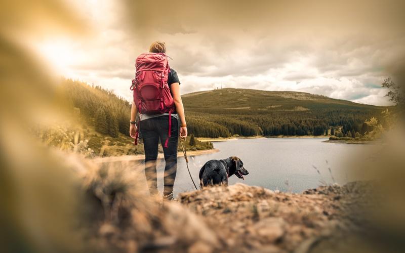 seen in österreich mit hund wandern urlaub