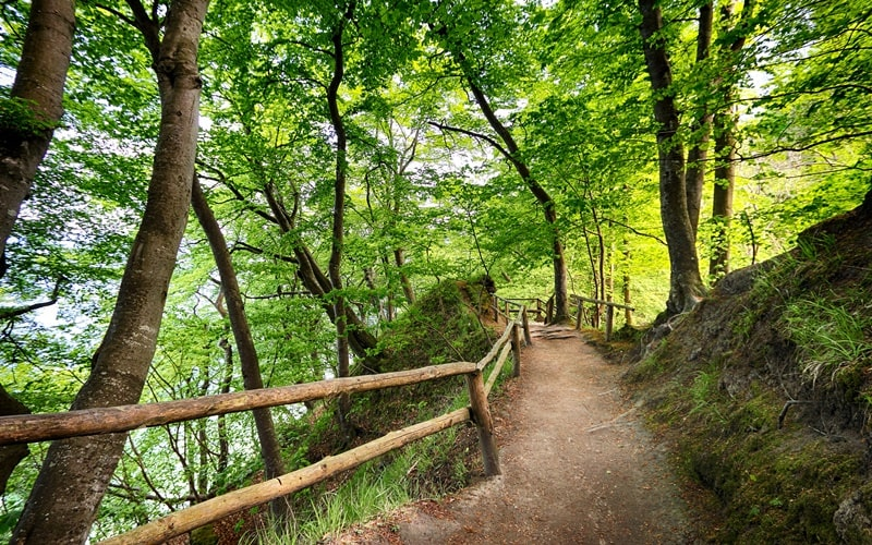 Treppe Rügen