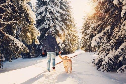 Eifel im Winter