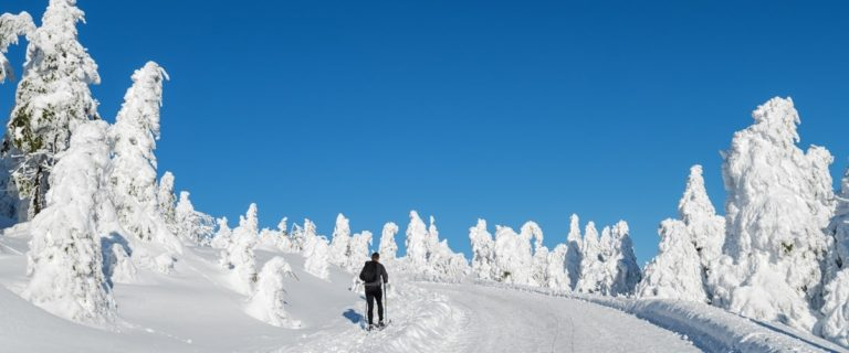 Silvester im Harz