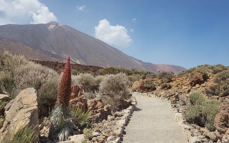 Teide Nationalpark Wandern