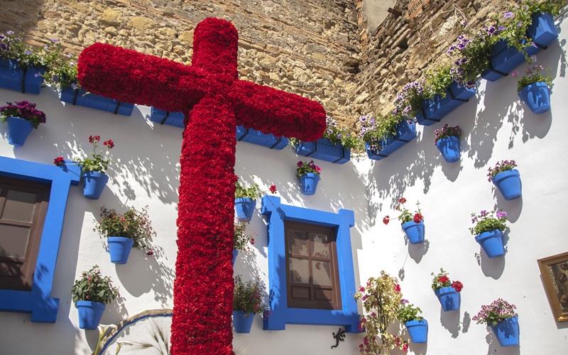 fiesta de las cruzes