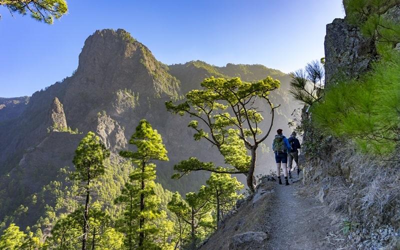 La Palma Pico de Bejenado