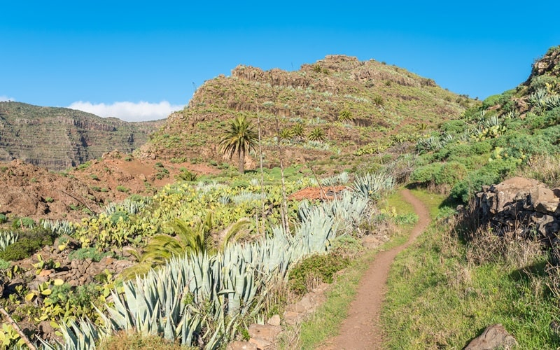La Gomera Trekking-Tour 3 Tage